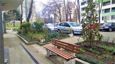 """Магнолии и лавандула ще цъфтят пред бл.34 в """"Зорница"""" – жителите му поискаха от Общината това"""
