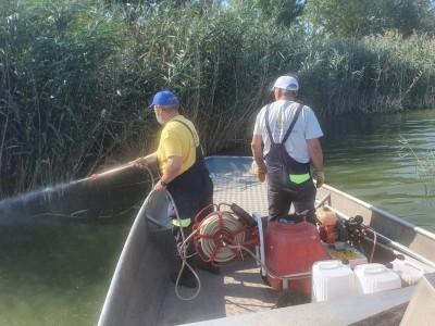 Пръскат против ларви на комари в района на Вая и Мандренското езеро