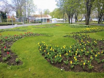 """Зелени скулптури, флорални фотокътчета и цветно пространство за отдих са сред изненадите на """"Флора Бургас 2021"""""""
