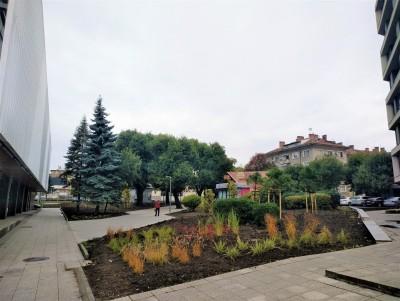 Към старите дървета в обновения район до НХК добавиха много нова зеленина