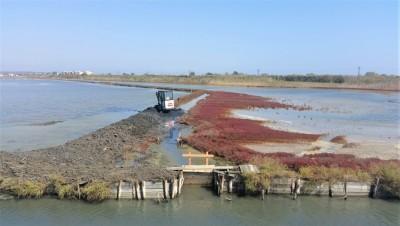 """Екипът на проекта """"Лагуната на живота"""" извършва важни консервационни дейности в Атанасовско езеро"""